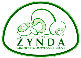 Zynda